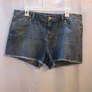Women's Size 16 Boston Proper Denim Jean Shorts